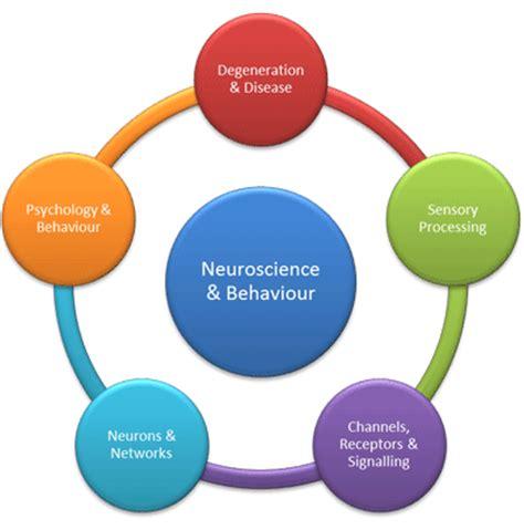 Cognitive psychology studies Flashcards and Study Sets